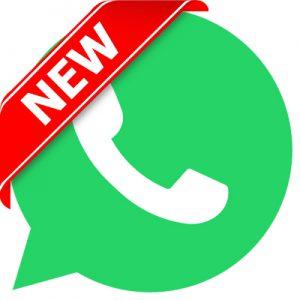 WA-Contact-Us-Button